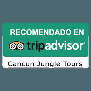 Recomendado trip advisor_Mesa de trabajo 1